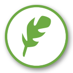 1st Choice tree care icon