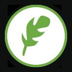 1st Choice tree care icon